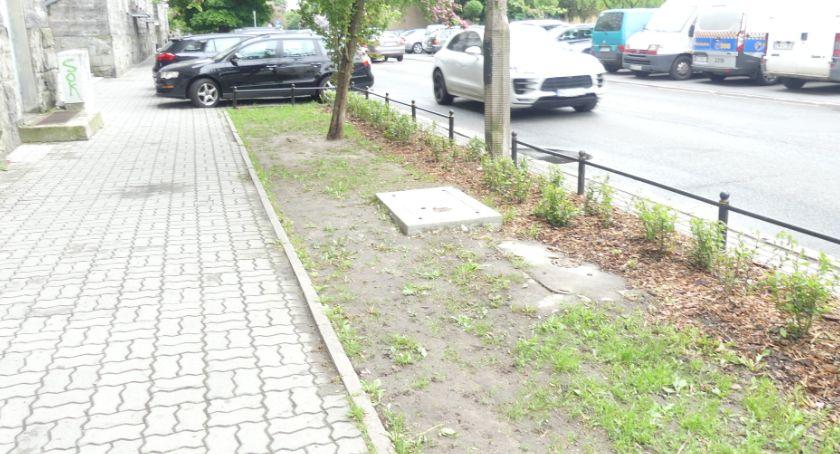 ulice, trawniki Białobrzeskiej - zdjęcie, fotografia