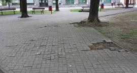 Budżet partycypacyjny -  Rewitalizacja Placu Baśniowego