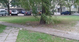 Budżet partycypacyjny -        Remont odtworzeniowy podwórek przy ul. Skorochód Majewskiego