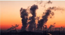 Smog – działanie globalne a nie w ramach lokalnego budżetu partycypacyjnego