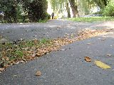Nawet asfalt ze wstydu się zapadł.