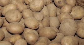 Jak dobrać ziemniaki do odpowiednich potraw?