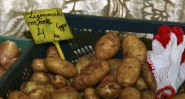 Polskie młode ziemniaki są, ale bardzo drogie