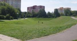 Wymiana nawierzchni chodników w parku Korotyńskiego (nr 1712)