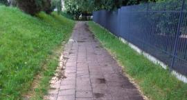 Remont chodnika przy Przedszkolu 315 Grzeszczyka 2 (nr 2450)