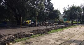 Modernizacja boiska w Parku Malickiego