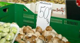 Dużo grzybów a ceny delikatnie w górę