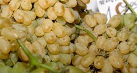Dużo winogron, fasolka i pomidory drożeją
