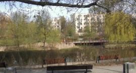 Park Zasława Malickiego i jego walory