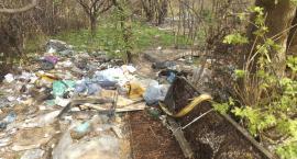 Działki, czy wylęgarnia śmieci?