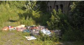 Fort Szczęśliwice darmowym wysypiskiem śmieci?