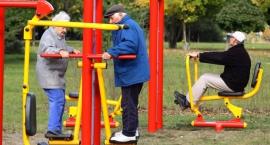 Darmowe treningi w Parku Cietrzewia i na Szczęśliwicach