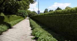 Rusza budowa zielonej ściany na Wawelskiej