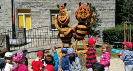 Pszczółka Maja z Guciem są już na Ochocie.