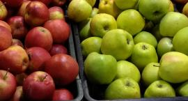 Jabłka w niebywale niskich cenach!