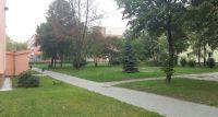 Biurowiec na trawniku