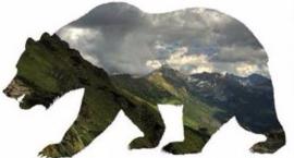 O tatrzańskich niedźwiedziach w Sklepie Podróżnika