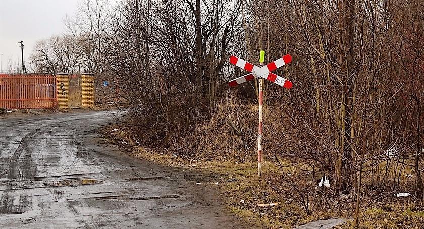 Czy powstanie Park Linearny na Wyględowie – wzdłuż dawnej bocznicy kolejowej?