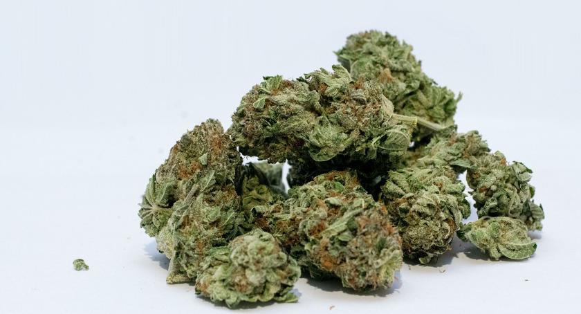Bezpieczeństwo, Cztery osoby zatrzymane zabezpieczono cztery kilogramy narkotyków - zdjęcie, fotografia