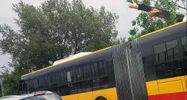 Na Czerniakowskiej – między Chełmską i Witosa – spadło drzewo na przejeżdżający autobus