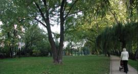 1 lipca Teatr Baza zaprasza na rodzinny piknik w rytmie znanych szlagierów stolicy w Parku Sieleckim