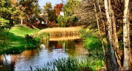 Skąd się wzięła Sadyba – Ogród i jak upamiętnia swoją historię?