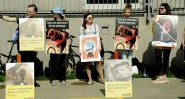 Czy cyrk bez zwierząt to jeszcze cyrk? Protestujący pod cyrkiem Korona na Stegnach twierdzą, że tak.