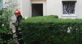 Pożar przy ul. Zwierzynieckiej: spalona kuchnia z powodu elektrycznej frytkownicy?