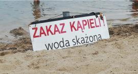 Zakaz kąpieli w Jeziorku Czerniakowskim – do odwołania. Ale plażować można…