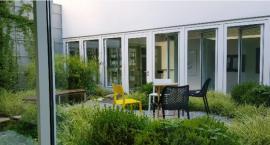 Dwa mini ogródki w Domu Kultury Kadr - na wysokościach, między kondygnacjami