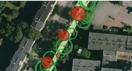 Chcesz się dowiedzieć co dzieje się z drzewami w twojej okolicy? Wystarczy spojrzeć...