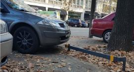 """""""Szanuj zieleń"""" dotrze również na Mokotów – po zbadaniu programu pilotażowego w Śródmieściu"""