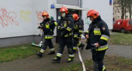 Dym z piwnicy przy ul. Joliot-Curie, mały pożar i wyciek gazu z nieszczelnej instalacji