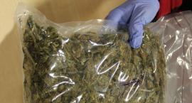 Za posiadanie marihuany - cotygodniowa wizyta na komendzie.