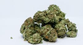 Cztery osoby zatrzymane, zabezpieczono cztery kilogramy narkotyków
