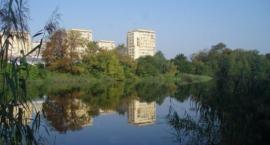 Czy Jeziorko Czerniakowskie zniknie i zamieni się w mokradła?