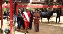 """""""Tam i z Powrotem"""" zabiera swoich gości do Sulawesi"""
