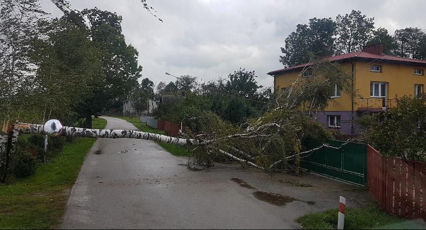 Informacje z Radomia i okolic , Orkan Ksawery przeszedł Radomiem regionem - zdjęcie, fotografia