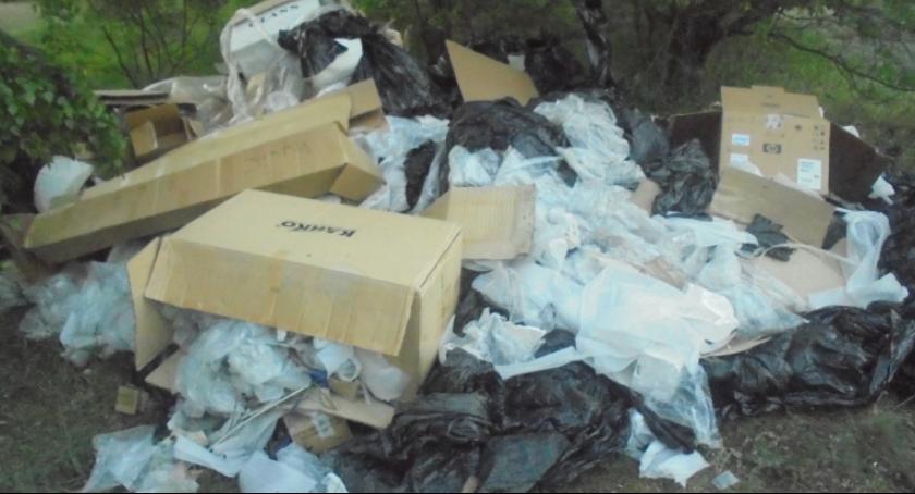 Interwencja, Dokumenty danymi osobowymi wśród śmieci porzuconych lesie - zdjęcie, fotografia