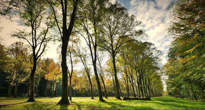 Inne, Piknik rodzinny otwarcie parku Michałowie - zdjęcie, fotografia
