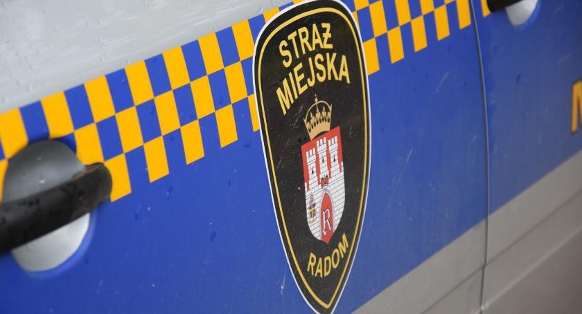 Interwencja, Straż Miejska podsumowuje miesiąc październik - zdjęcie, fotografia