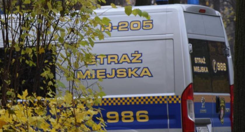 Interwencja, Nieprawidłowe parkowanie czele listy Straż Miejska podsumowuje listopad - zdjęcie, fotografia