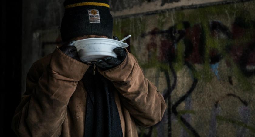 Informacje z Radomia i okolic , Urząd Miasta przypomina Pamiętajmy bezdomnych - zdjęcie, fotografia