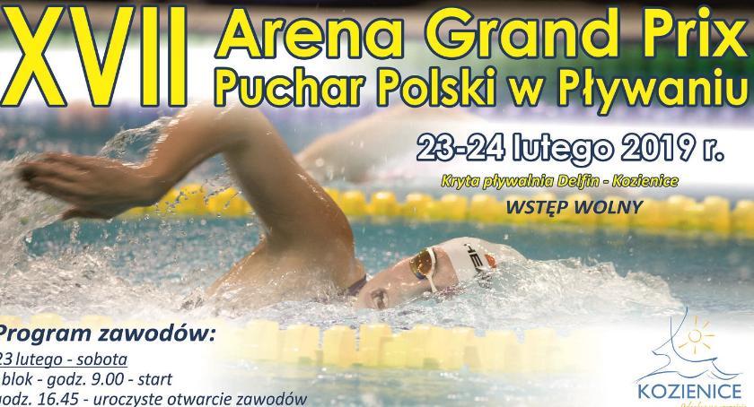 Sport - Inne, Arena Grand Polski Pływaniu - zdjęcie, fotografia