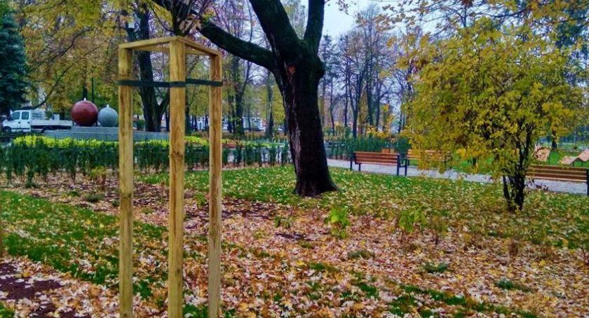 Informacje z Radomia i okolic , Mieszkańcy lecia Zieleń beton - zdjęcie, fotografia