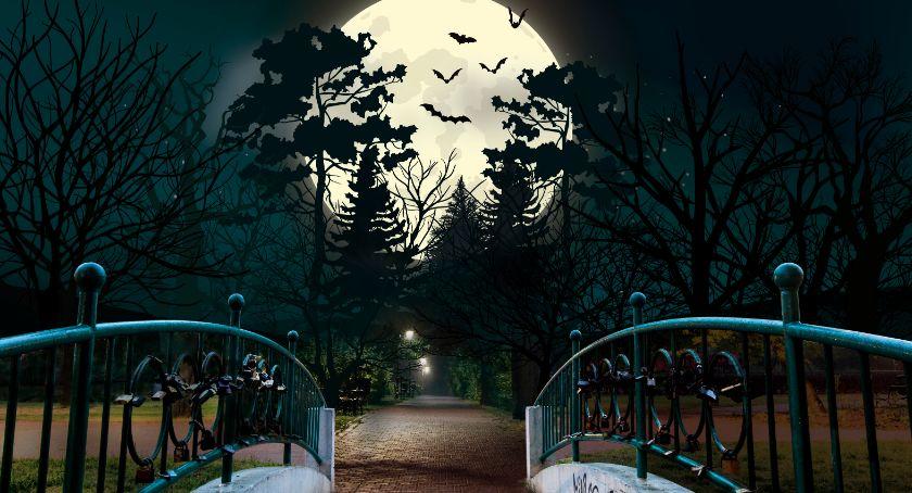 Rozrywka, Radom Night Tajemniczy Stary Ogród - zdjęcie, fotografia