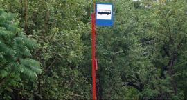 Zmiana lokalizacji przystanku na ul. Starokrakowskiej