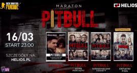 Maraton Pitbulla w kinie Helios. Wygraj wejściówkę! [KONKURS]