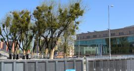 Już wkrótce Plac Jagielloński zyska nowy wygląd. Będzie więcej zieleni i miejsc wypoczynkowych