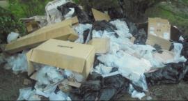 Dokumenty z danymi osobowymi wśród śmieci porzuconych w lesie